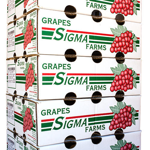 Sigma grapes