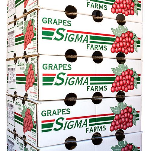 Sigma grapes